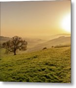 Misty South Downs Way Metal Print