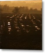 Misty Sunset On A Freshly Ploughed Field  Metal Print