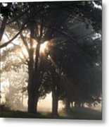Misty Texas Morning Metal Print
