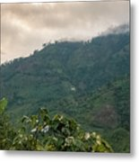Misty Valley Near Cajamarca Colombia Metal Print