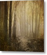 Misty Woodland Path Metal Print by Meirion Matthias