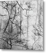 Misty Woods, Whitley Mill Metal Print