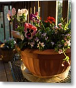 Mixed Basket, Balcony Garden, Hunter Hill, Hagerstown, Maryland, Metal Print