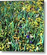 Mixed Wildflowers In Texas Metal Print