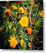 Mixture Of Flowers On Summer Day Metal Print