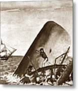 Moby Dick Both Jaws, Like Enormous Shears Bit The Craft Complete In Half Metal Print