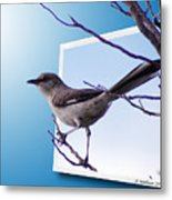 Mockingbird Branch Metal Print