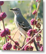 Mockingbird Heaven Metal Print