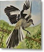 Mockingbird Landing Metal Print
