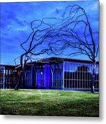 Modern Art Museum Of Fort Worth Metal Print