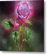 Modified Rose Metal Print