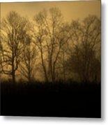 Morning Fog, #2, Smoky Mountains, Tennessee Metal Print