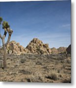 Mohave Desert Metal Print