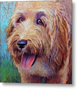 Mojo The Shaggy Dog Metal Print