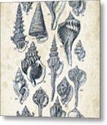 Mollusks - 1842 - 17 Metal Print