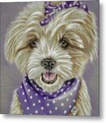 Molly The Maltese Metal Print