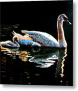 Mom And Baby Swan Metal Print