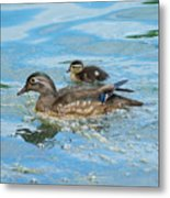Mom And Baby Woody Metal Print