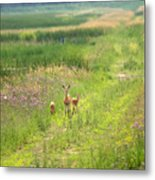 Mom And The Twins Metal Print