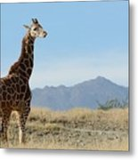 Moment Of Independence Metal Print