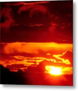 Moment Of Majesty Metal Print