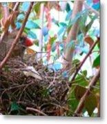 Momma Cardinal Nesting Metal Print