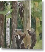Momma With 4 Bear Cubs Metal Print