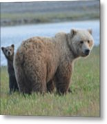 Mommy Day Care Metal Print
