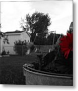 Mom's Backyard Metal Print