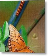 Monarch And Caterpillar Metal Print