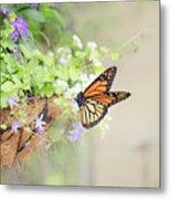 Monarch And Garden Basket Metal Print