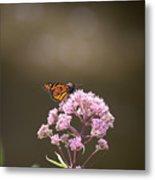 Monarch Butterfly 3 Metal Print