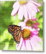 Monarch Butterfly Art Metal Print