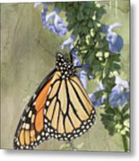 Monarch Butterfly Textured Background Metal Print