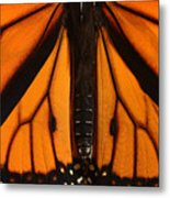 Monarch Butterfly Wings Metal Print