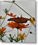 Monarch on the River Metal Print