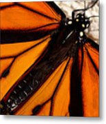 Monarch Triangles Metal Print