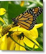 Monarchs Gold Metal Print