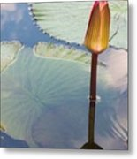 Monet Water Lily Stem Red Orange Metal Print