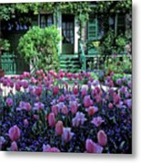 Monet's House With Tulips Metal Print