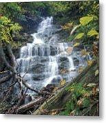 Money Brook Falls Mount Greylock Metal Print