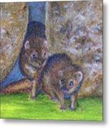 Mongoose #511 Metal Print