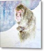 Monkey In Meditation Metal Print
