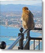 Monkey Overlooking Spain Metal Print