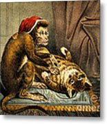 Monkey Physician Examining Cat For Fleas Metal Print