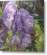 Monkshood Metal Print