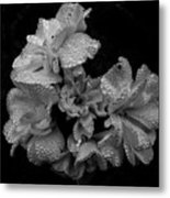 Mono Flower Chrome Metal Print