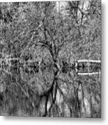 Monochrome Autumn Reflections Metal Print