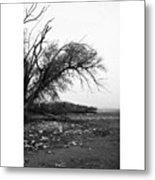 #monochrome #lake #landscape  #stausee Metal Print