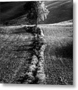 Monochrome Valley Metal Print
